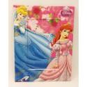 Porta Retrato Disney 10 x 15 cm - Princesas